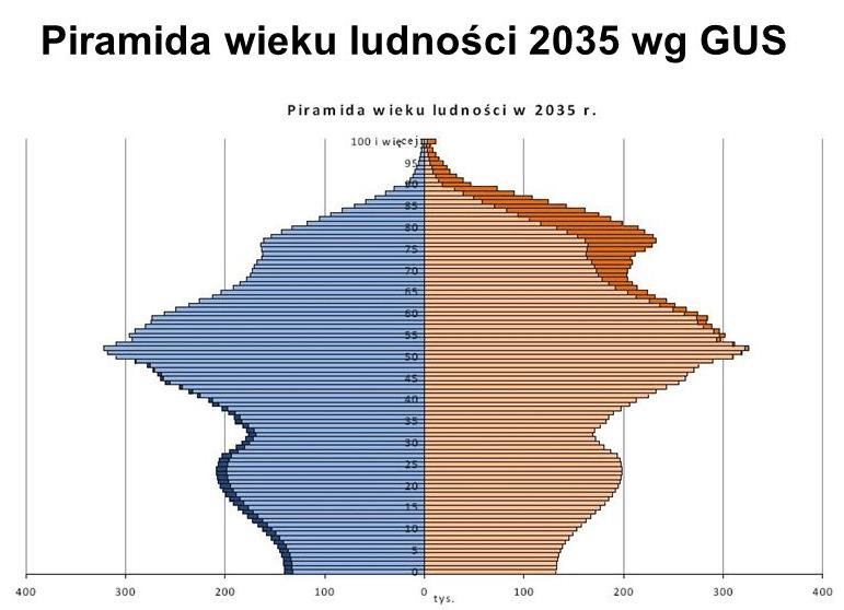 piramida wieku 2035