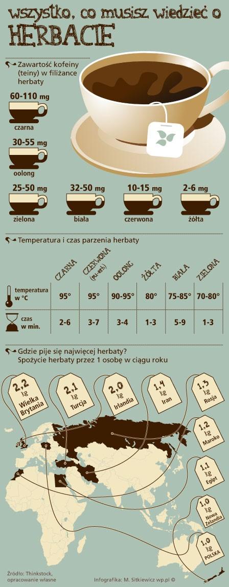 15 najciekawszych infografik w Internecie_5